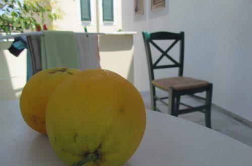 Mézédes narancs